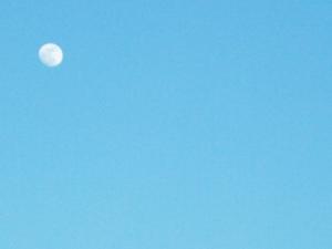 Last Night's Moon