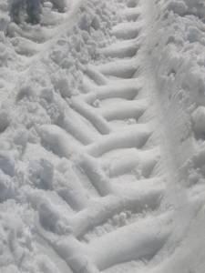 Snow Tracks
