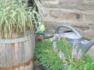 Watering Can. lol