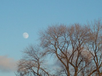 100_1444 Moon