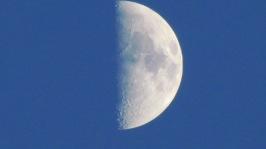 May 28 2012 IMG_0026