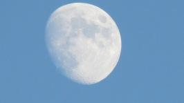 Nov 24 2012 Picture 025