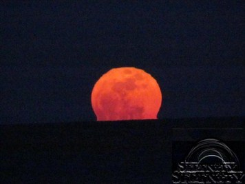 Super Moon March 19 2011 1